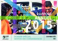 Rapport annuel 2015 (Format EPub)